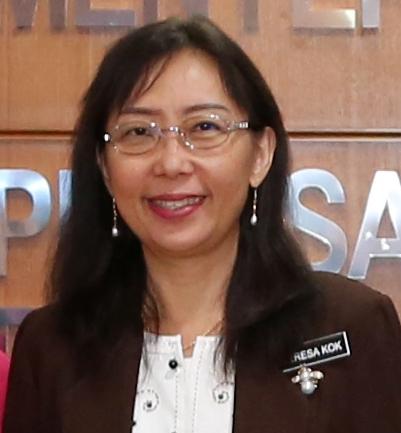 Teresa Kok Wikipedia