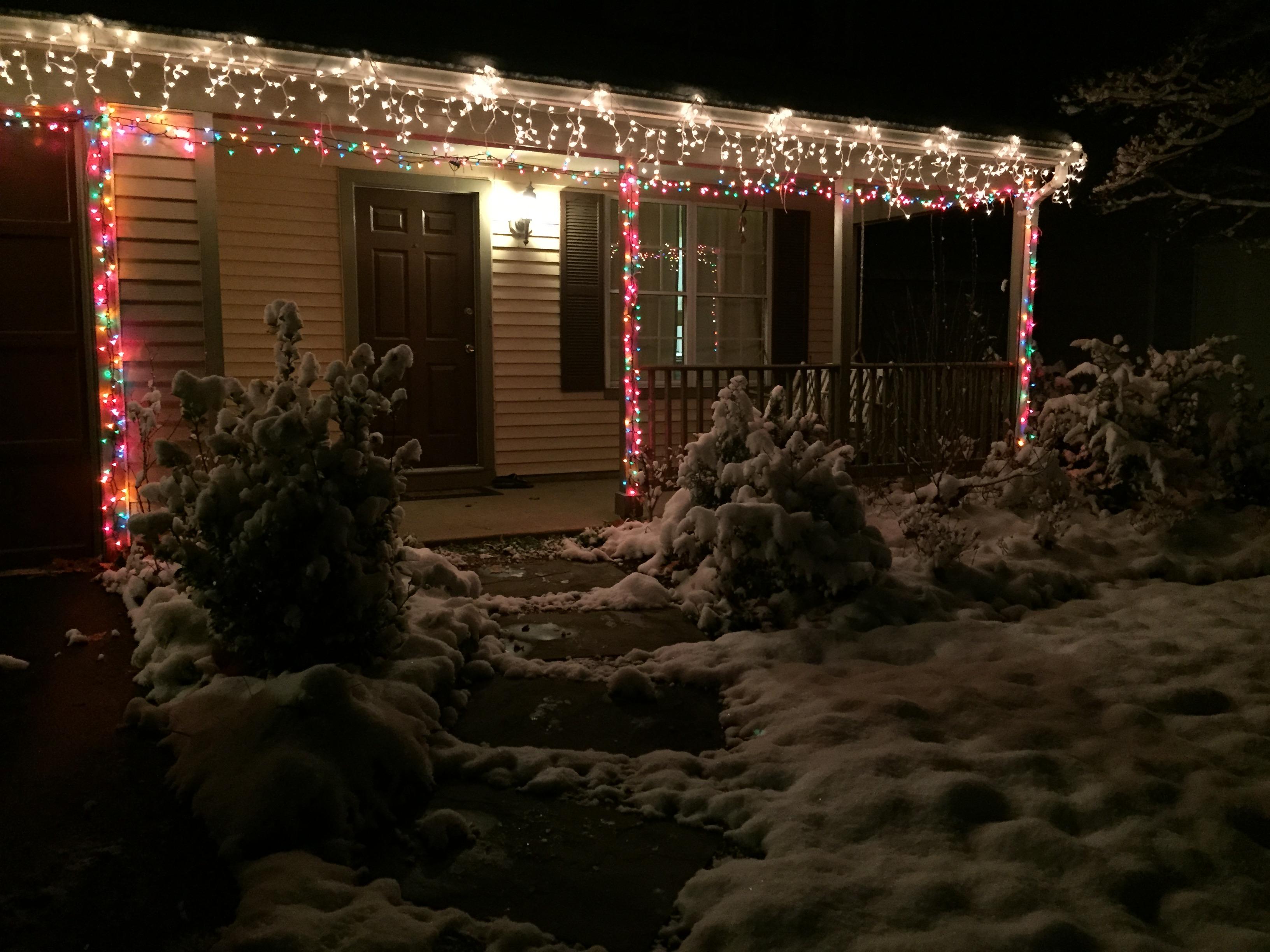 File snow covered plants and christmas lights