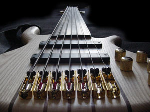 A seven-string fretless bass 7String.jpg