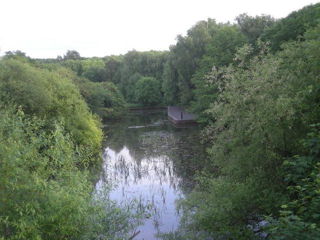 A lake at the nature park - geograph.org.uk - 832447