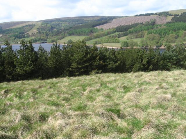 Across Errwood Reservoir - geograph.org.uk - 1295348