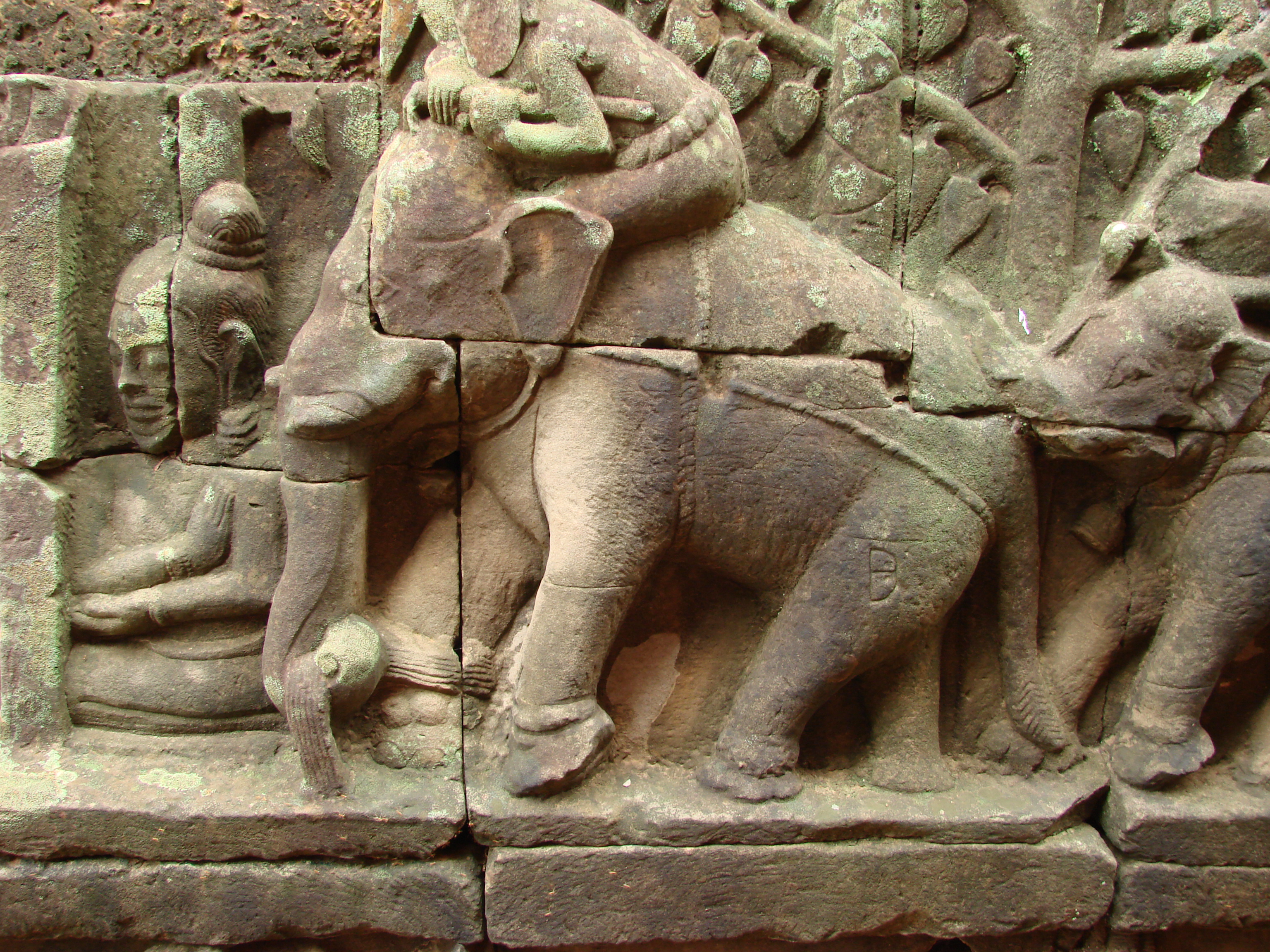 File angkor thom elephants wikimedia commons for Terrace of the elephants