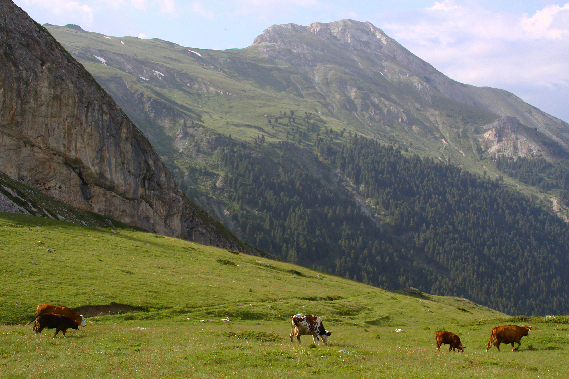 File beleg mountains wikimedia commons for Living on a mountain