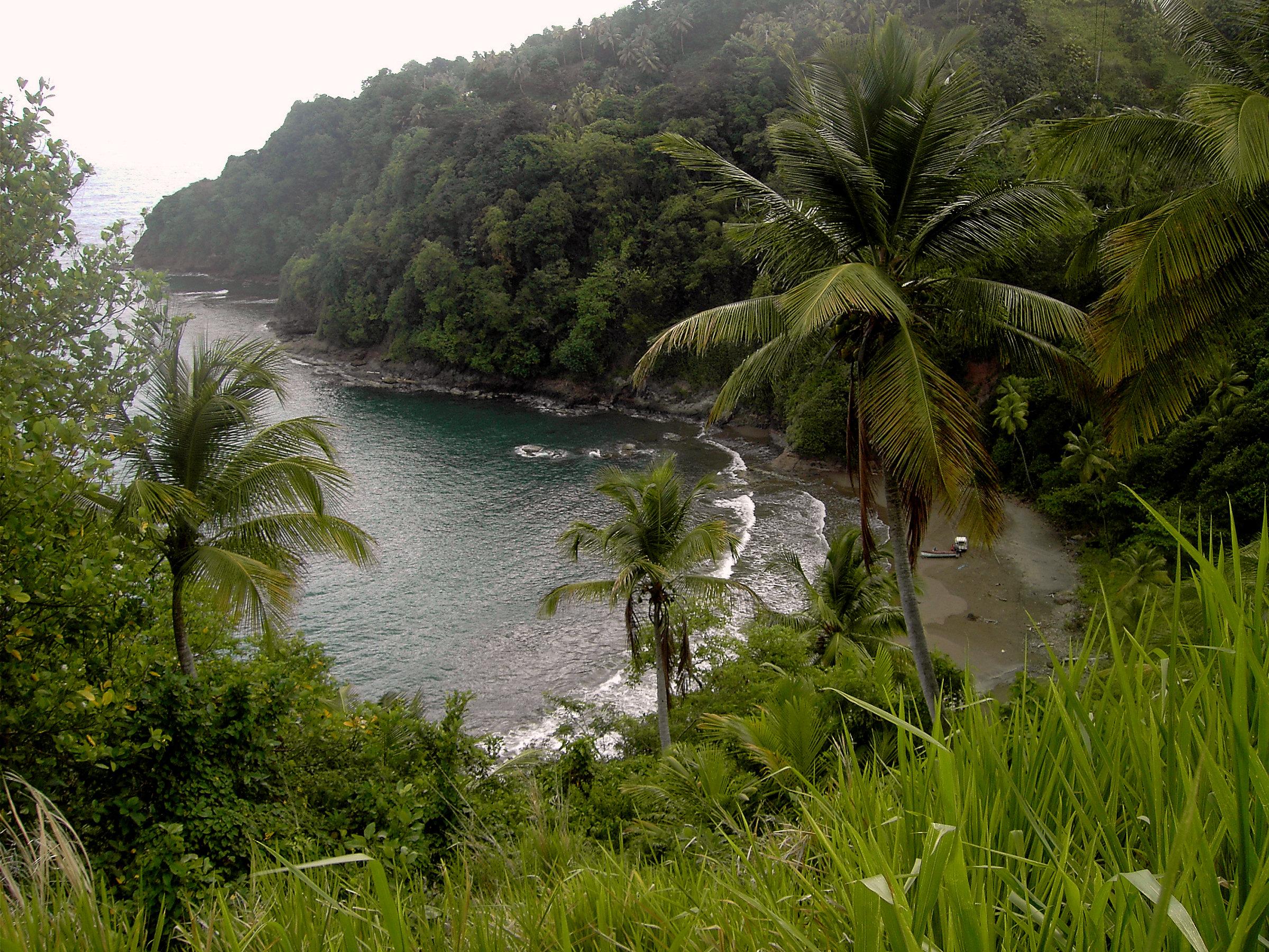Saint David Parish, Dominica - Wikipedia, the free encyclopedia