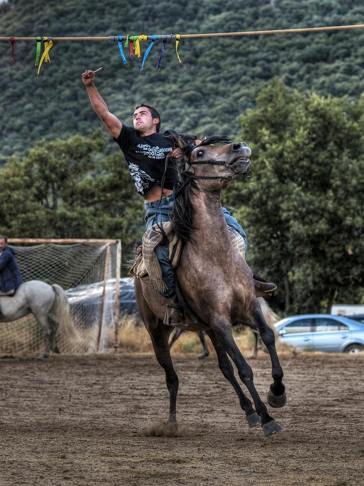 Carrera de cintas a caballo  Wikipedia la enciclopedia libre
