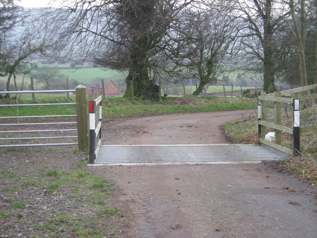 File:Cattle grid on Norbury Hill - geograph.org.uk - 671987.jpg