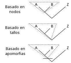 Depiction of Clado