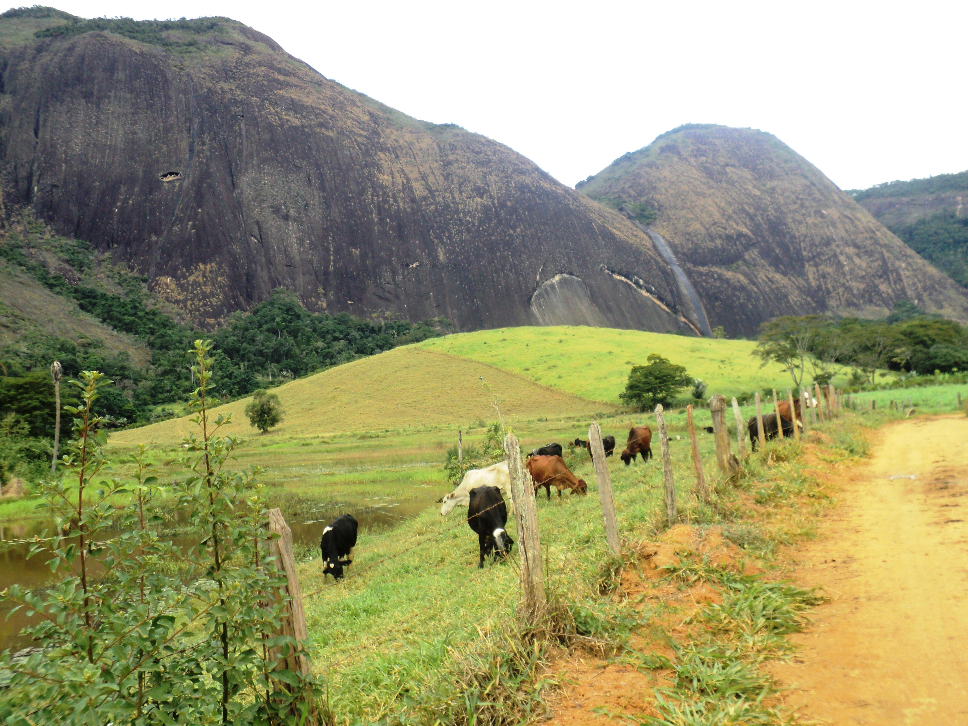 File:Corredor Ecológico e uso de solo.jpg - Wikimedia Commons