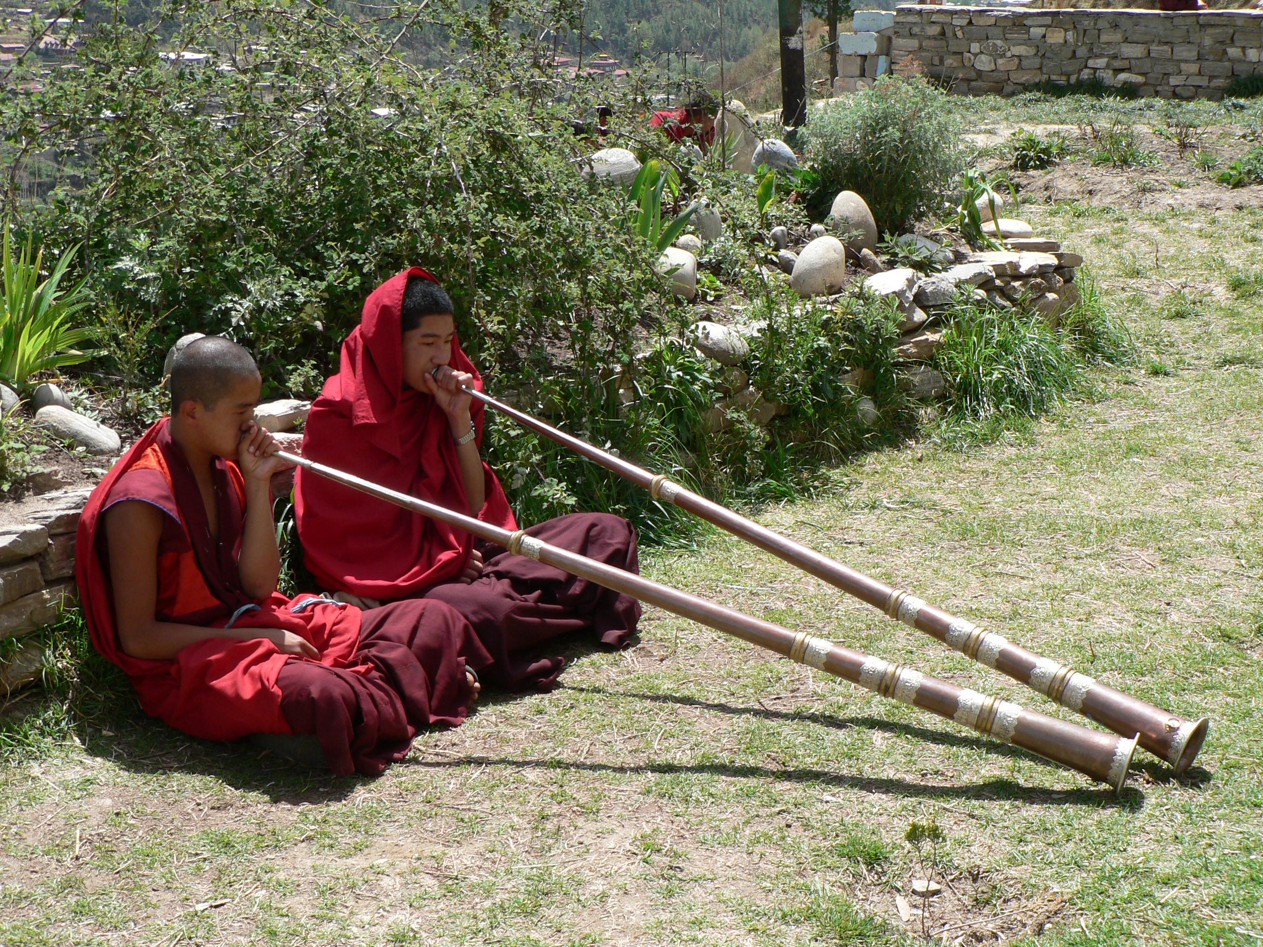 Bhutan music instument