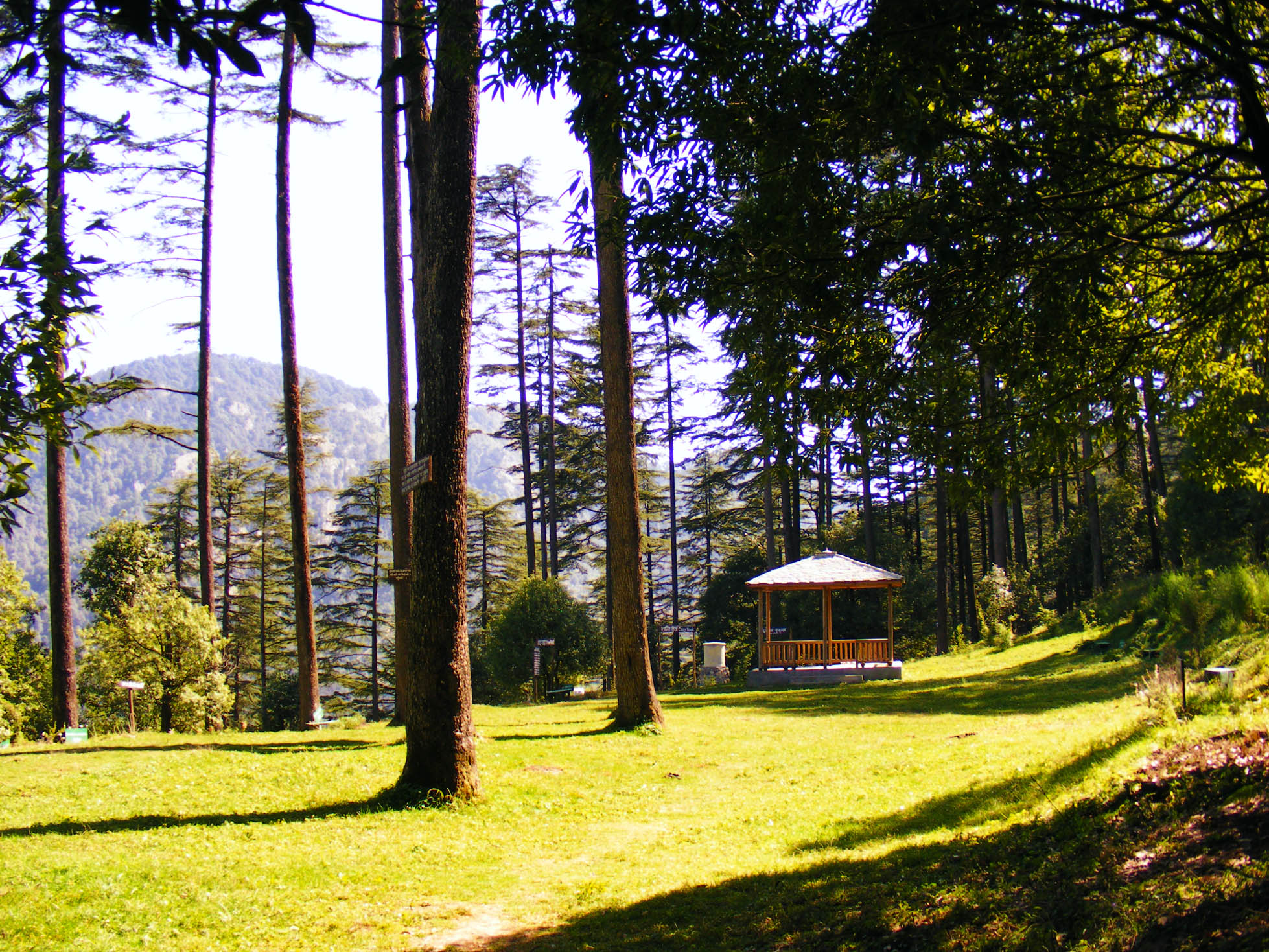 Dhanaulti Hill Station