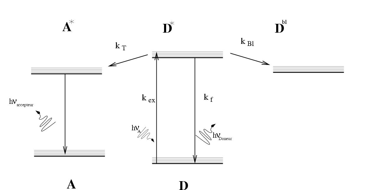 Ficheirofret jablonski diagramg wikipdia a enciclopdia livre ficheirofret jablonski diagramg ccuart Choice Image