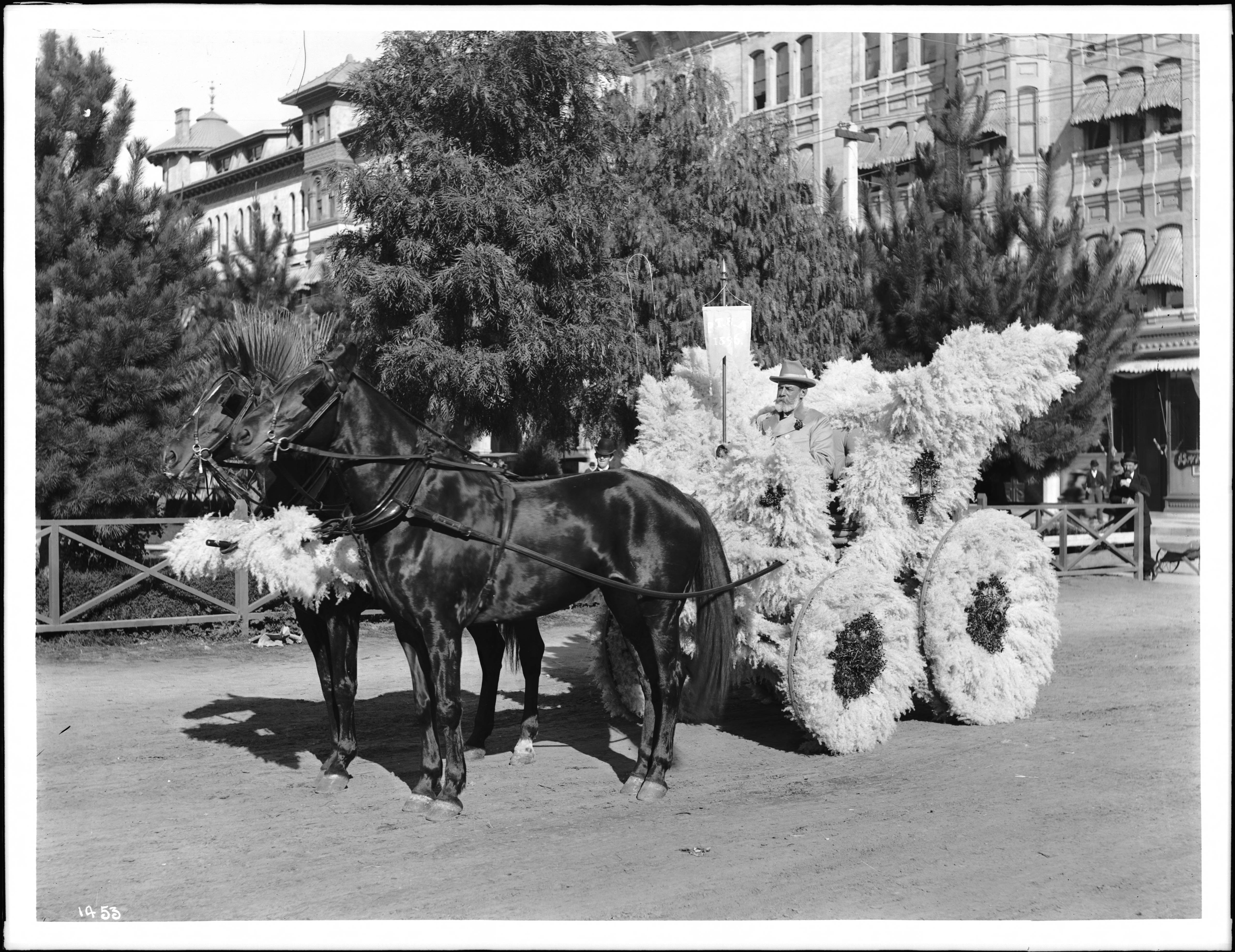 File Horse Drawn Float Covered With Pampas Grass In The