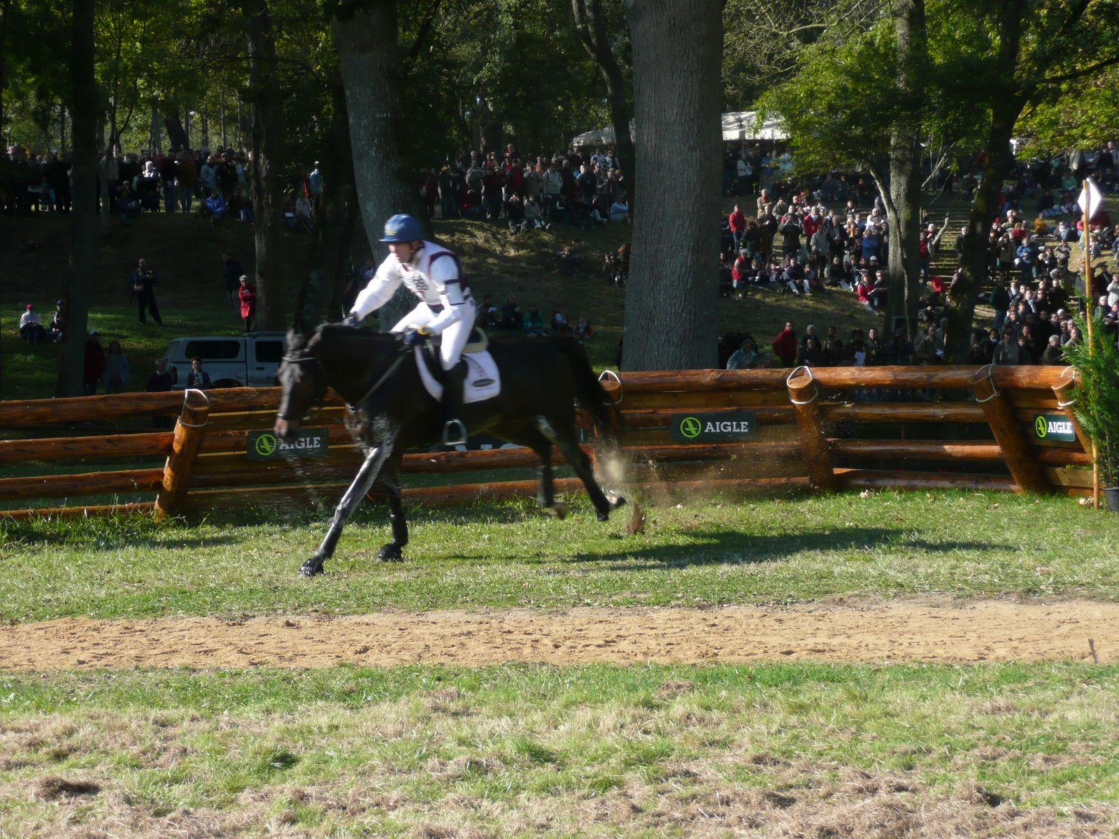 Horse Jumping Highest ...