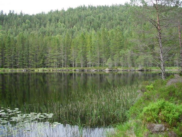 Loch an Amair - geograph.org.uk - 734628