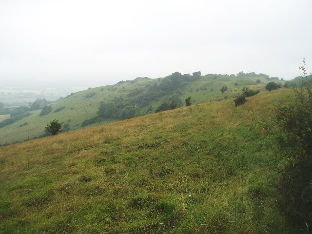 Looking towards Rawlsbury Camp from Bulbarrow - geograph.org.uk - 32694