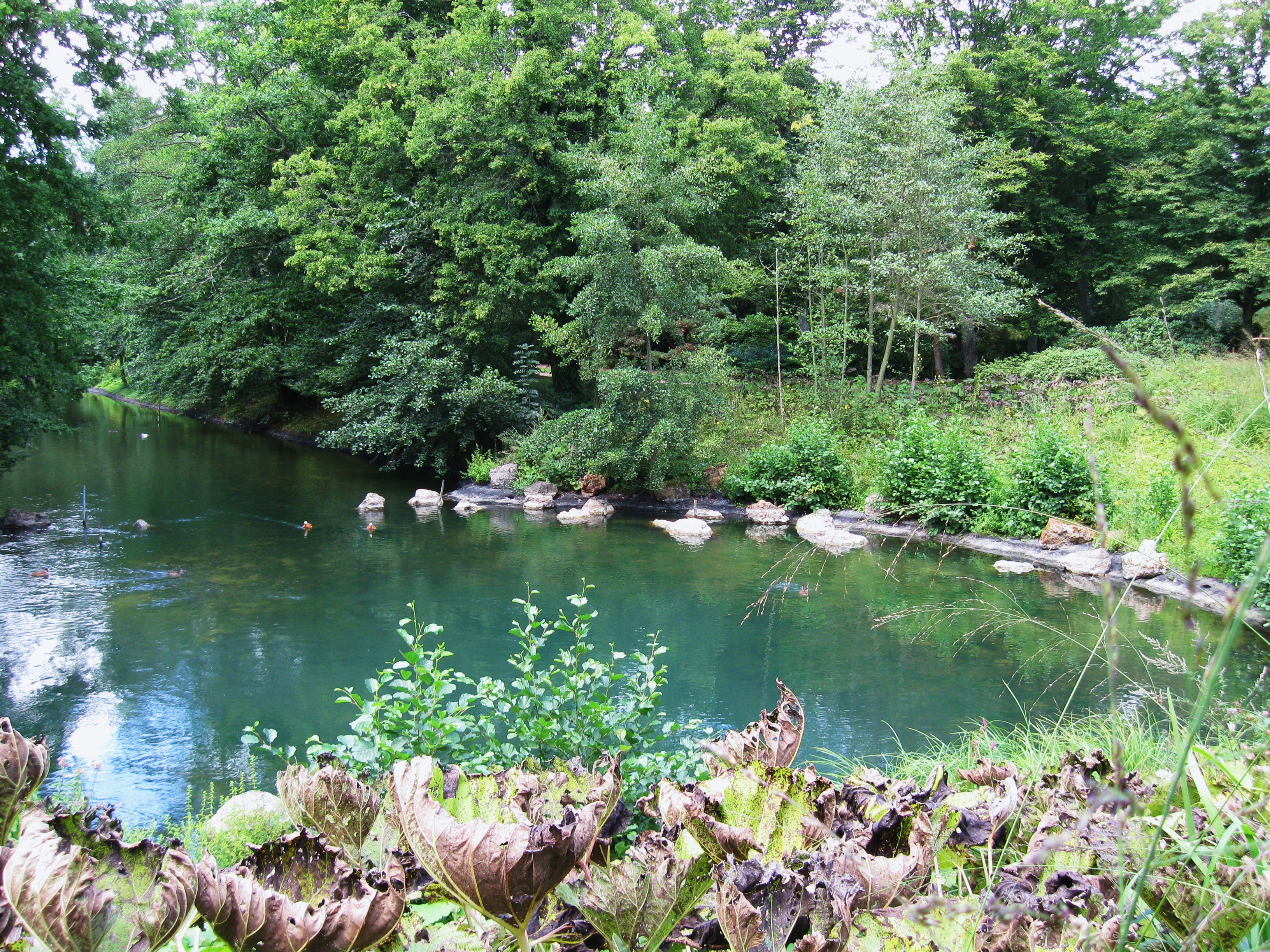 Facebook Cougar Colmar, Alsace-Champagne-Ardenne-Lorraine