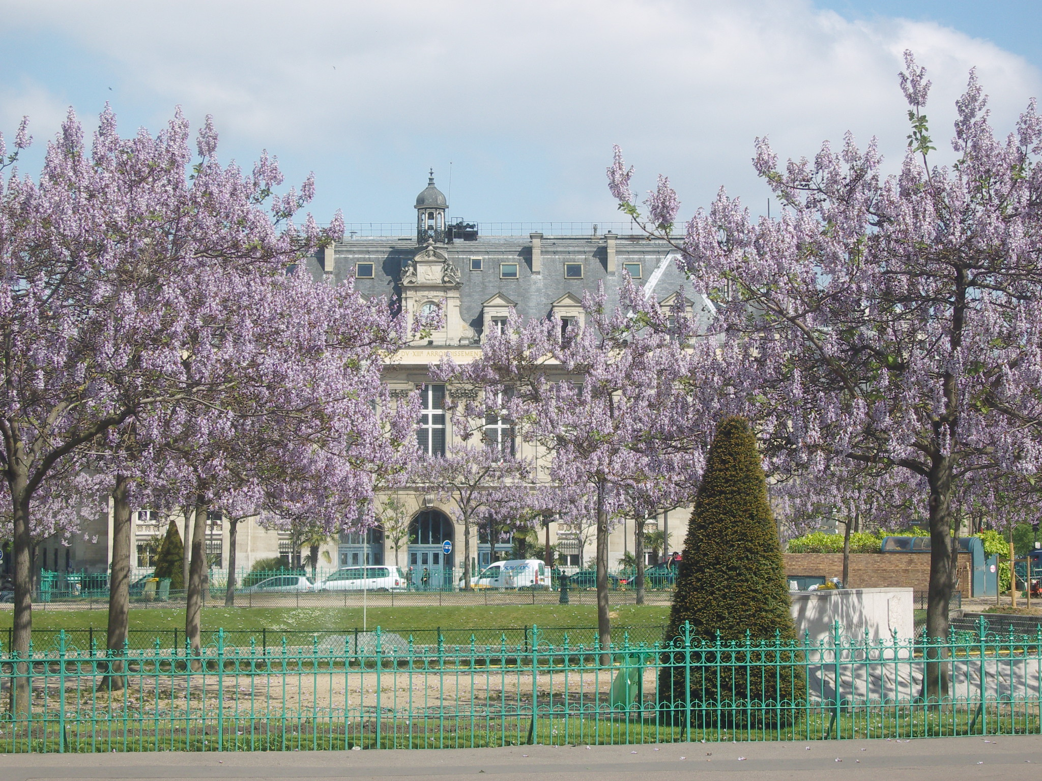 File paris 13e place d 39 italie paulownias en fleurs jpg for Arrondissement porte d italie
