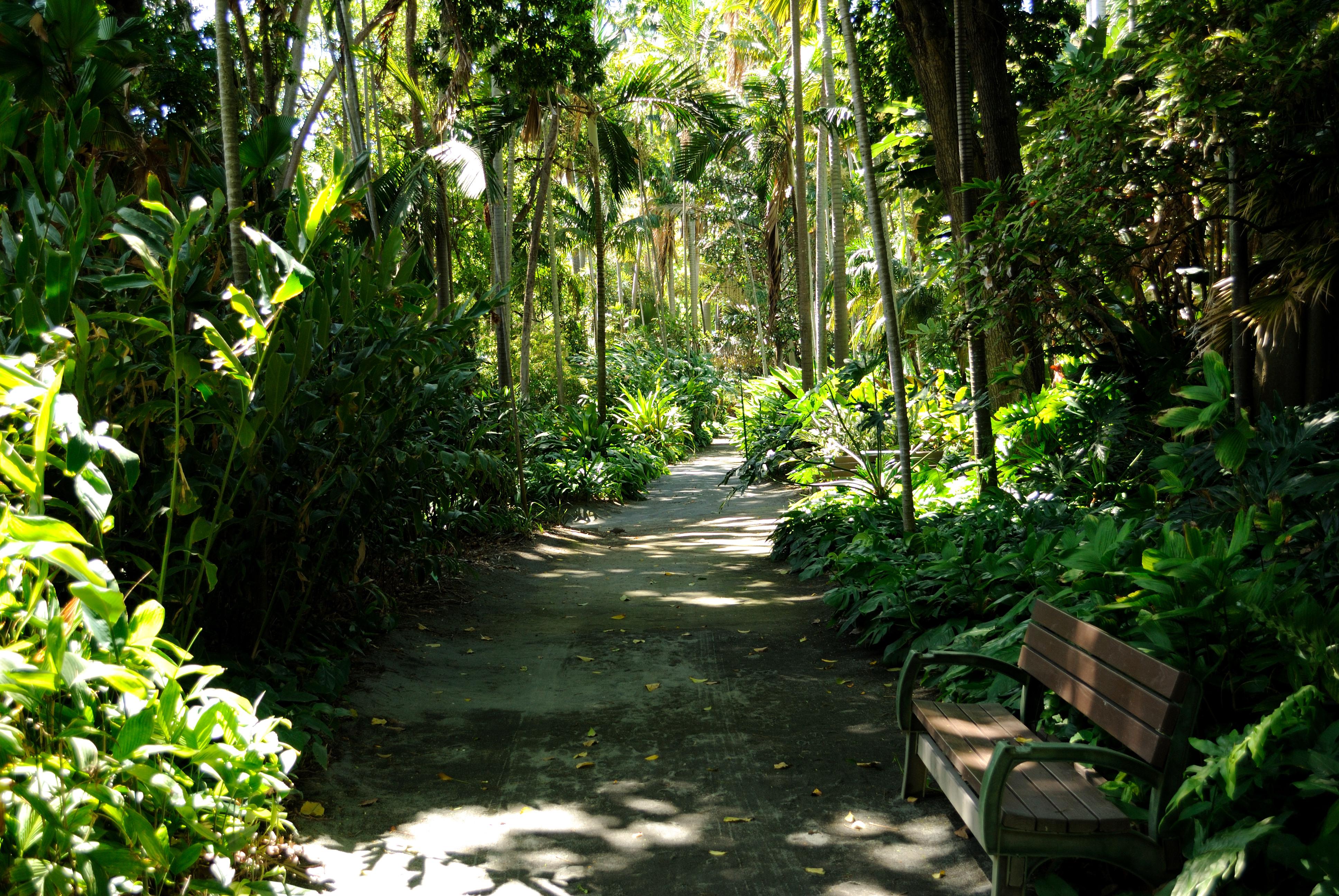 Ordinaire File:Path @ Foster Botanical Garden (4720029540)