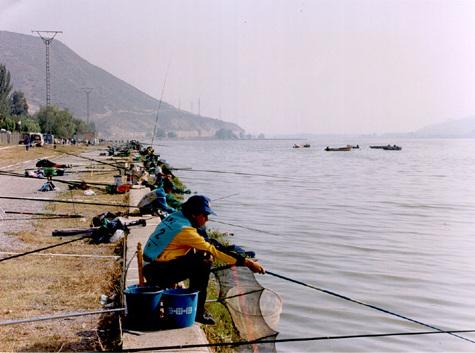 Descripción pesca