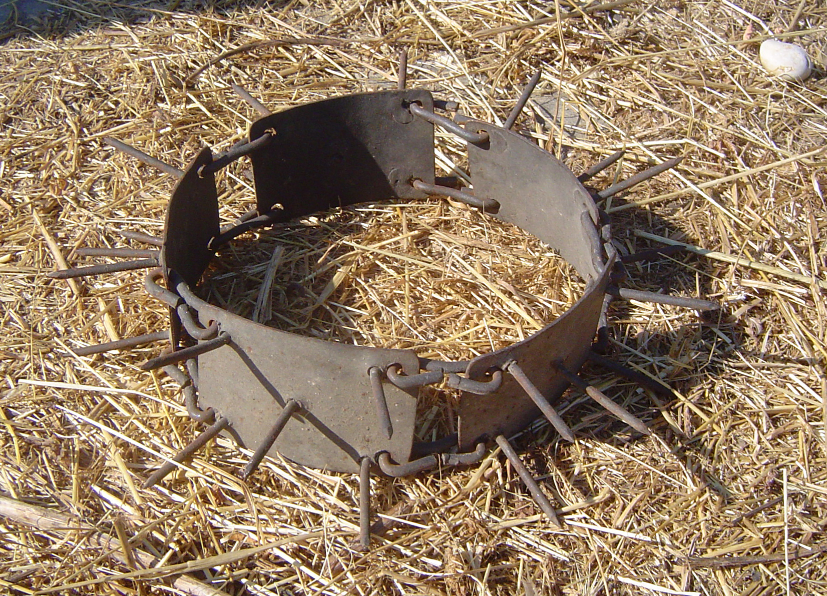 Image Result For Spiked Collar For