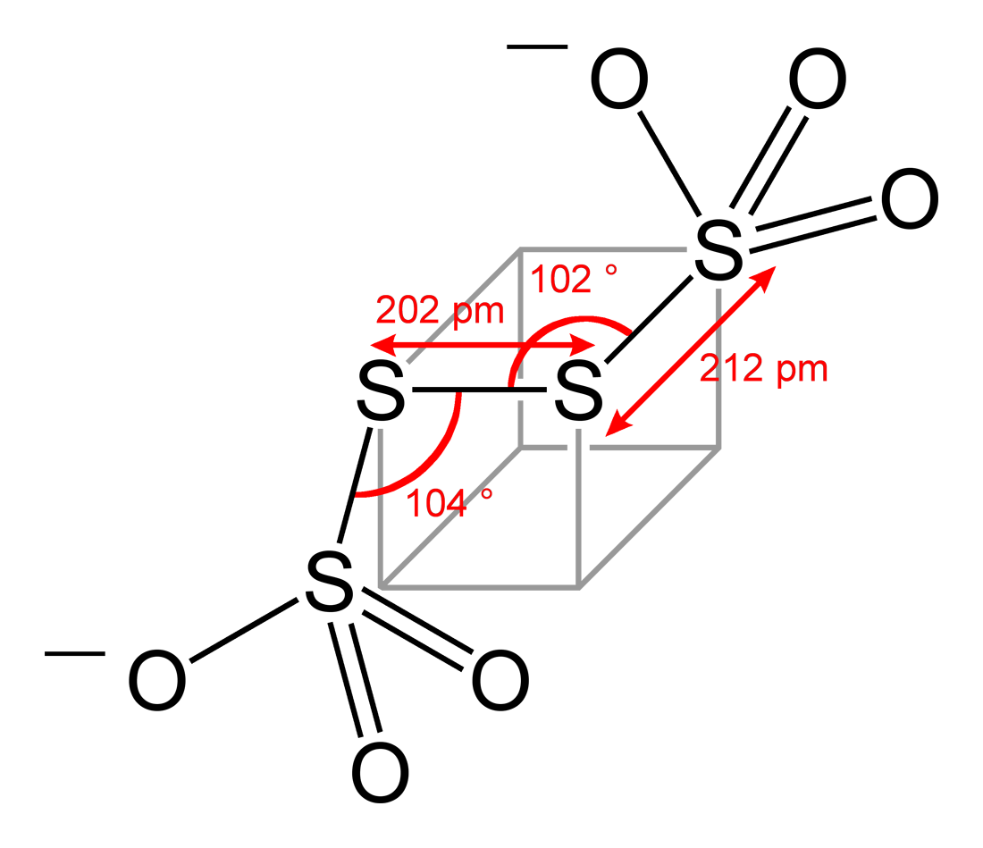 Detailed Structure Of The