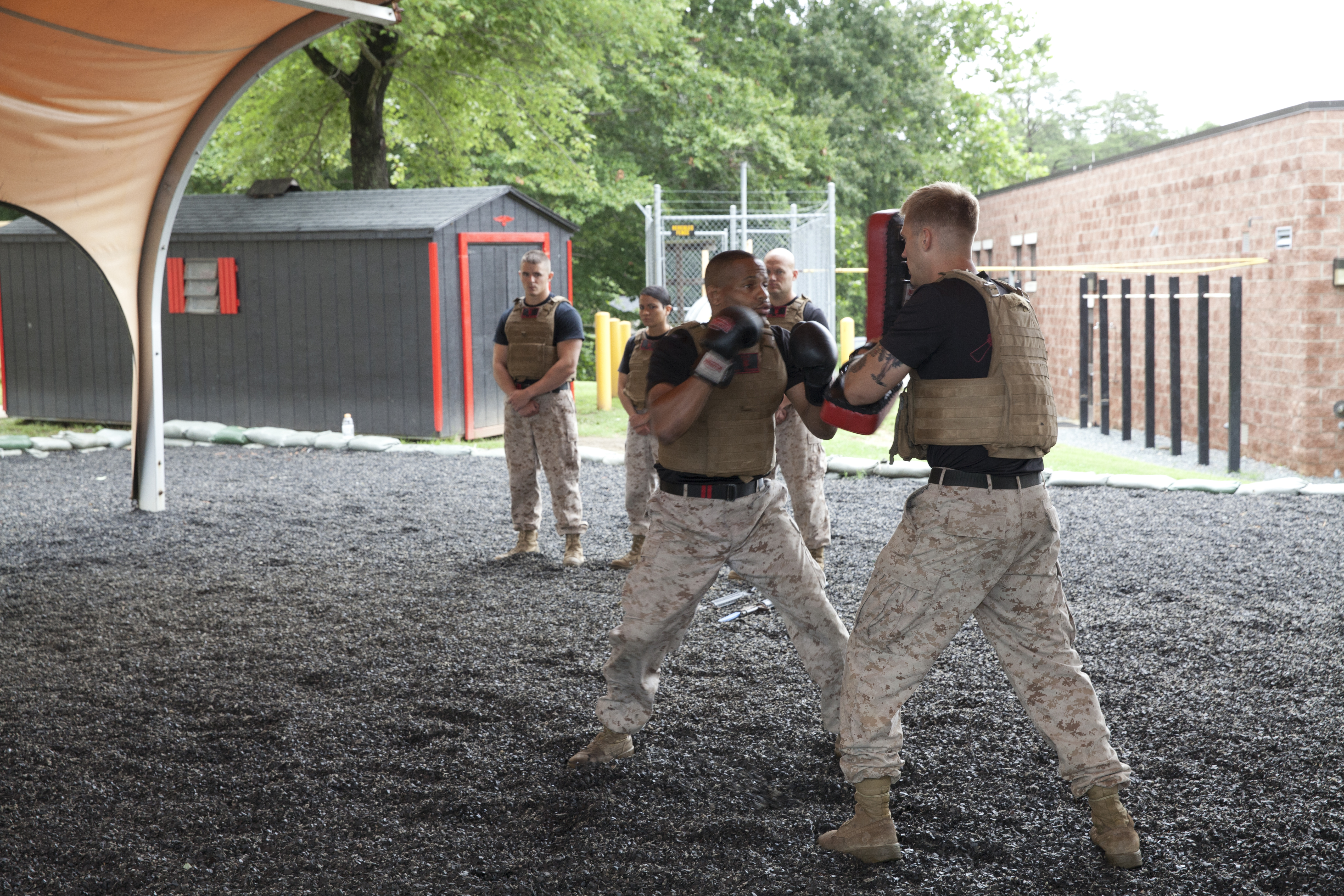 U.S. Marines demonstrate elements of the Marine Corps Martial Arts ...