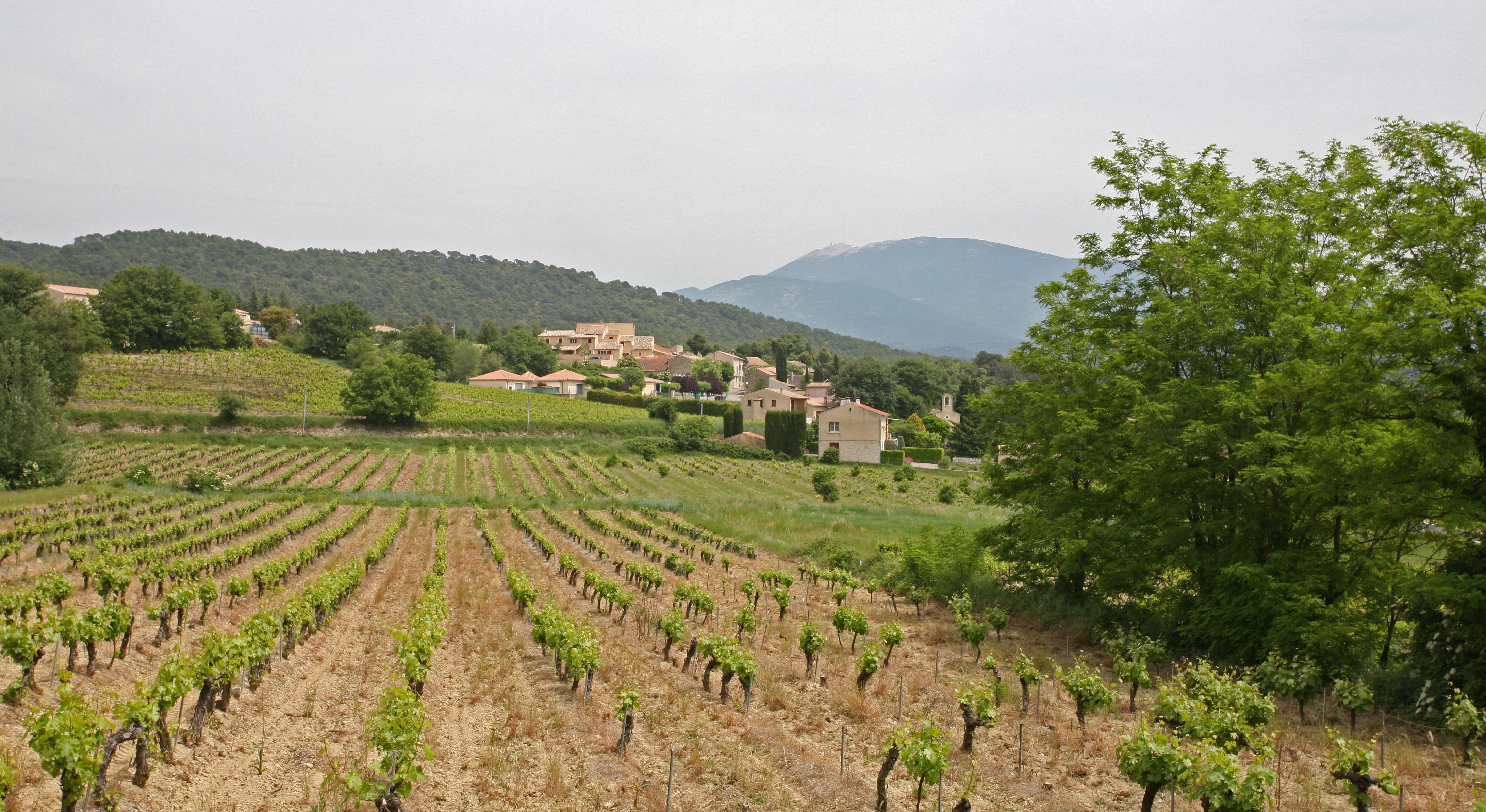 Saint-Marcellin-lès-Vaison