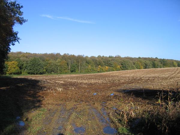 File:Warren Lane, Clophill, Beds - geograph.org.uk - 74242.jpg