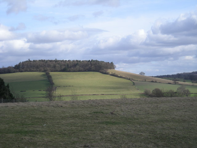 Ash Coppice hill from Windmill Hill - geograph.org.uk - 714387