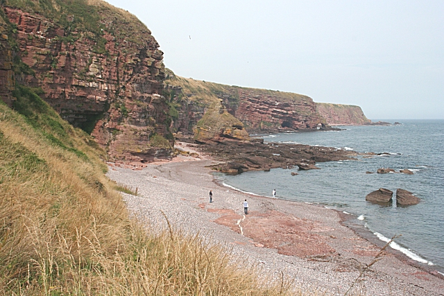 Auchmithie Cliffs - geograph.org.uk - 215876