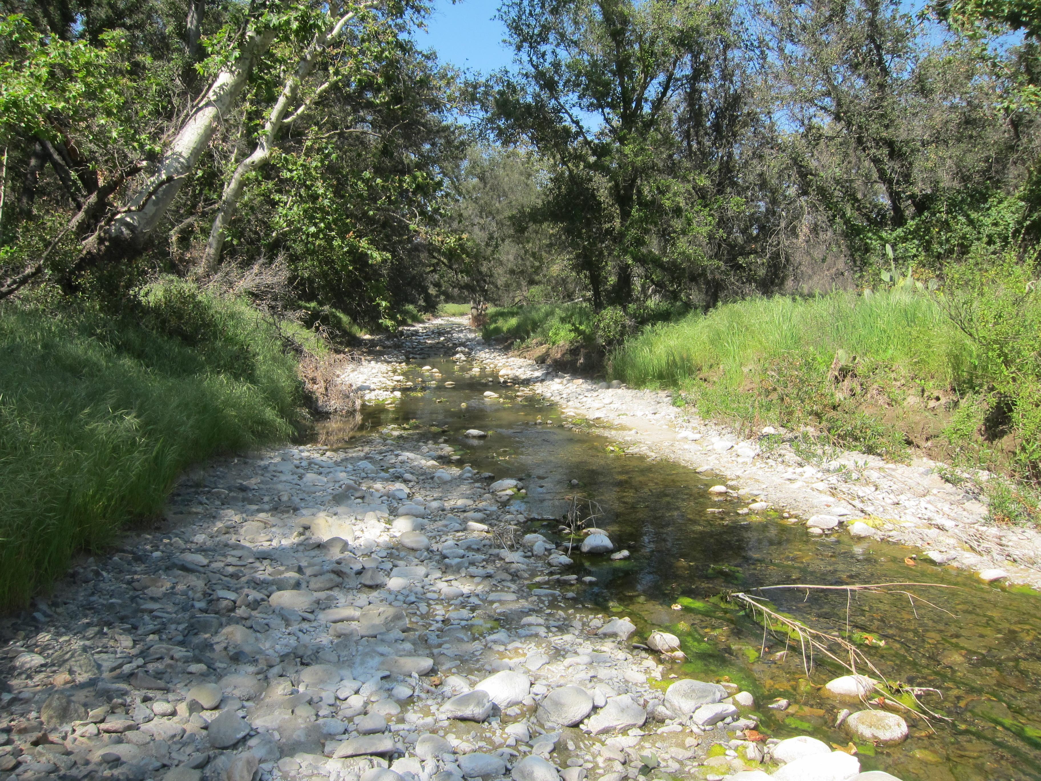 San juan creek wiki everipedia for Belle creek
