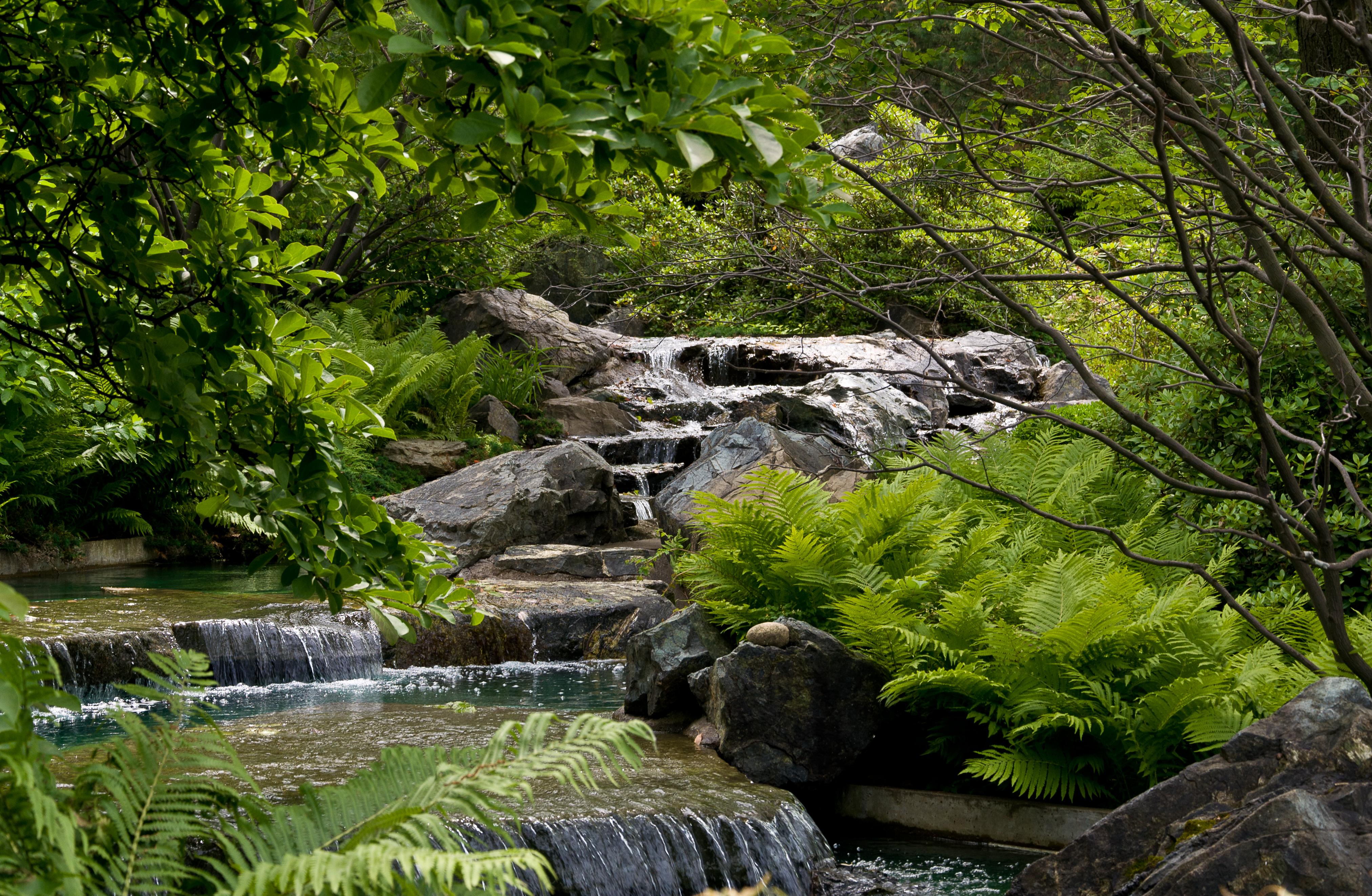 File cascade du jardin wikimedia commons - Cascade de jardin ...
