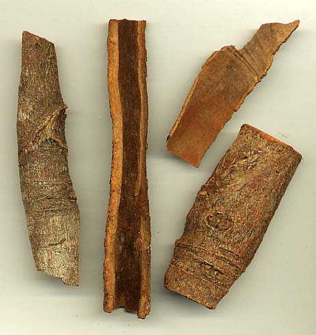 File:Cassia bark.jpg