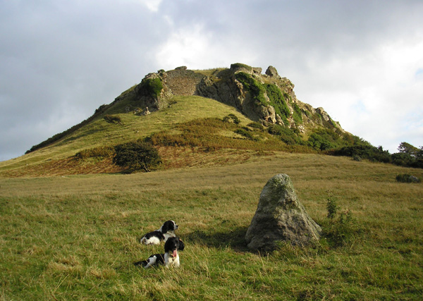 File:Castell Deganwy Castle - geograph.org.uk - 221851.jpg