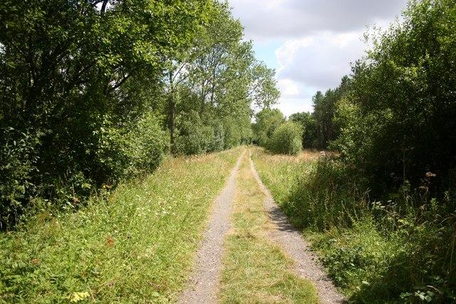 Chambers Farm Wood - geograph.org.uk - 520213