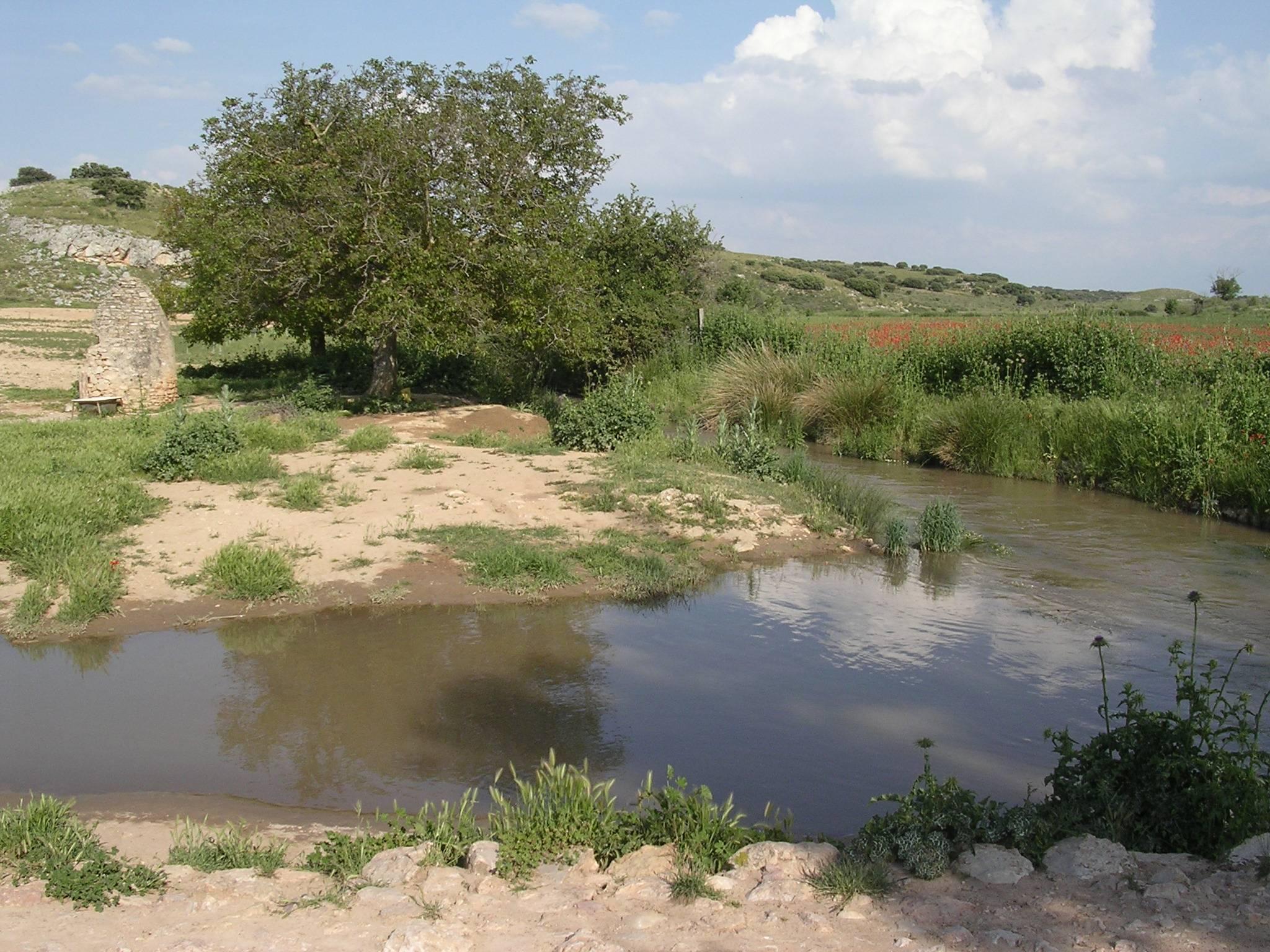 Río Córcoles