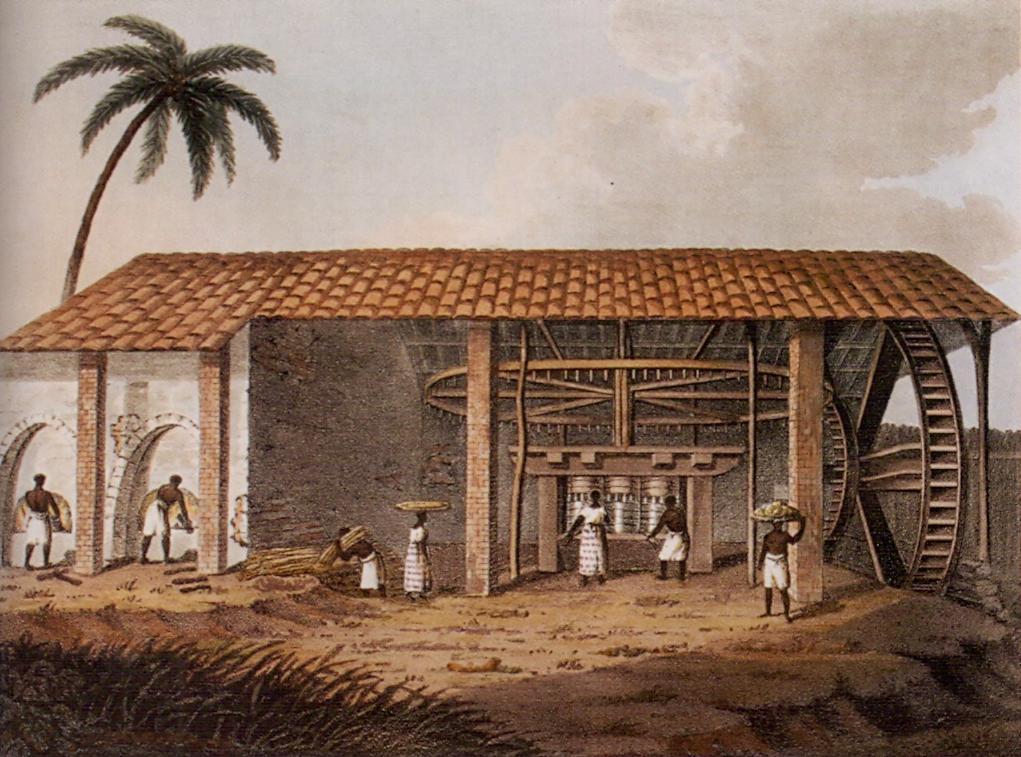 Plantation - Wikipédia, a enciclopédia livre