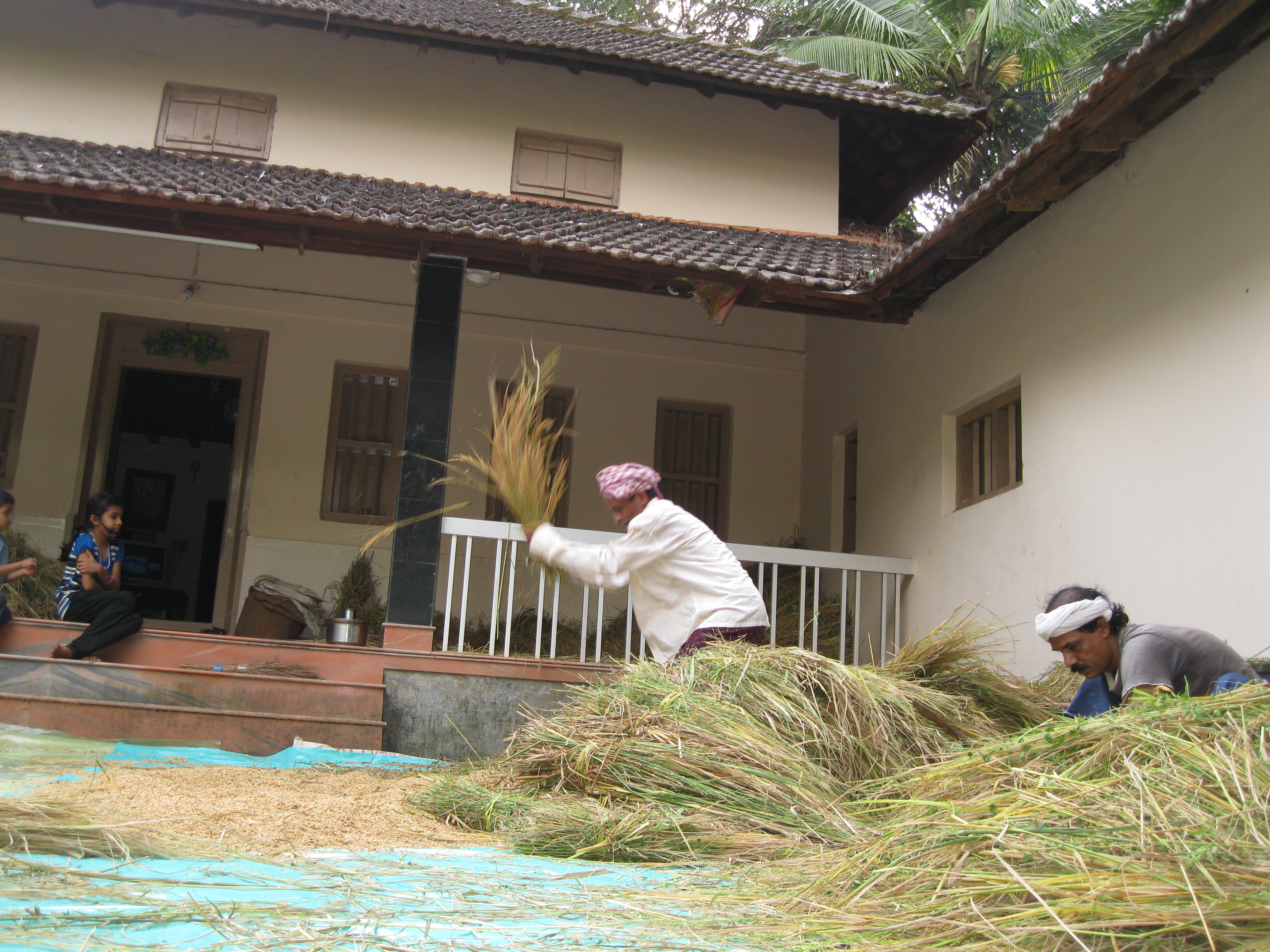 FileFarm House Kerala