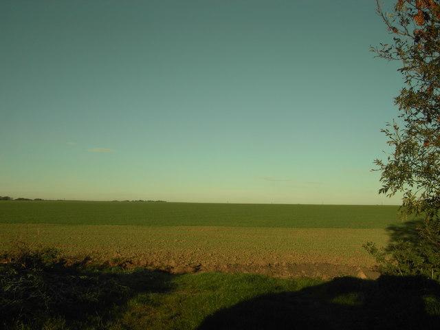 Farmland - geograph.org.uk - 271805
