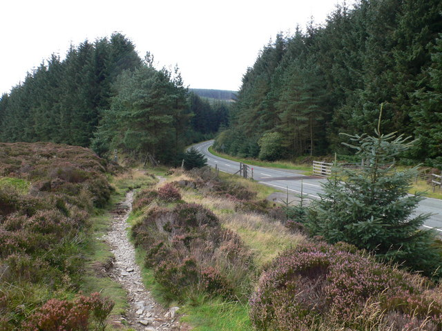 Footpath and road - geograph.org.uk - 982812