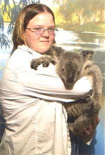 Holding Koala