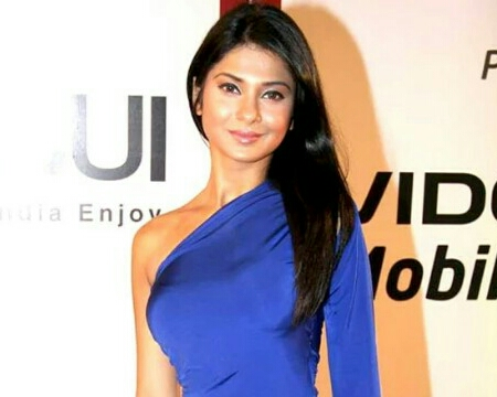Indian Telly Award for Best Actress in a Lead Role - Wikipedia