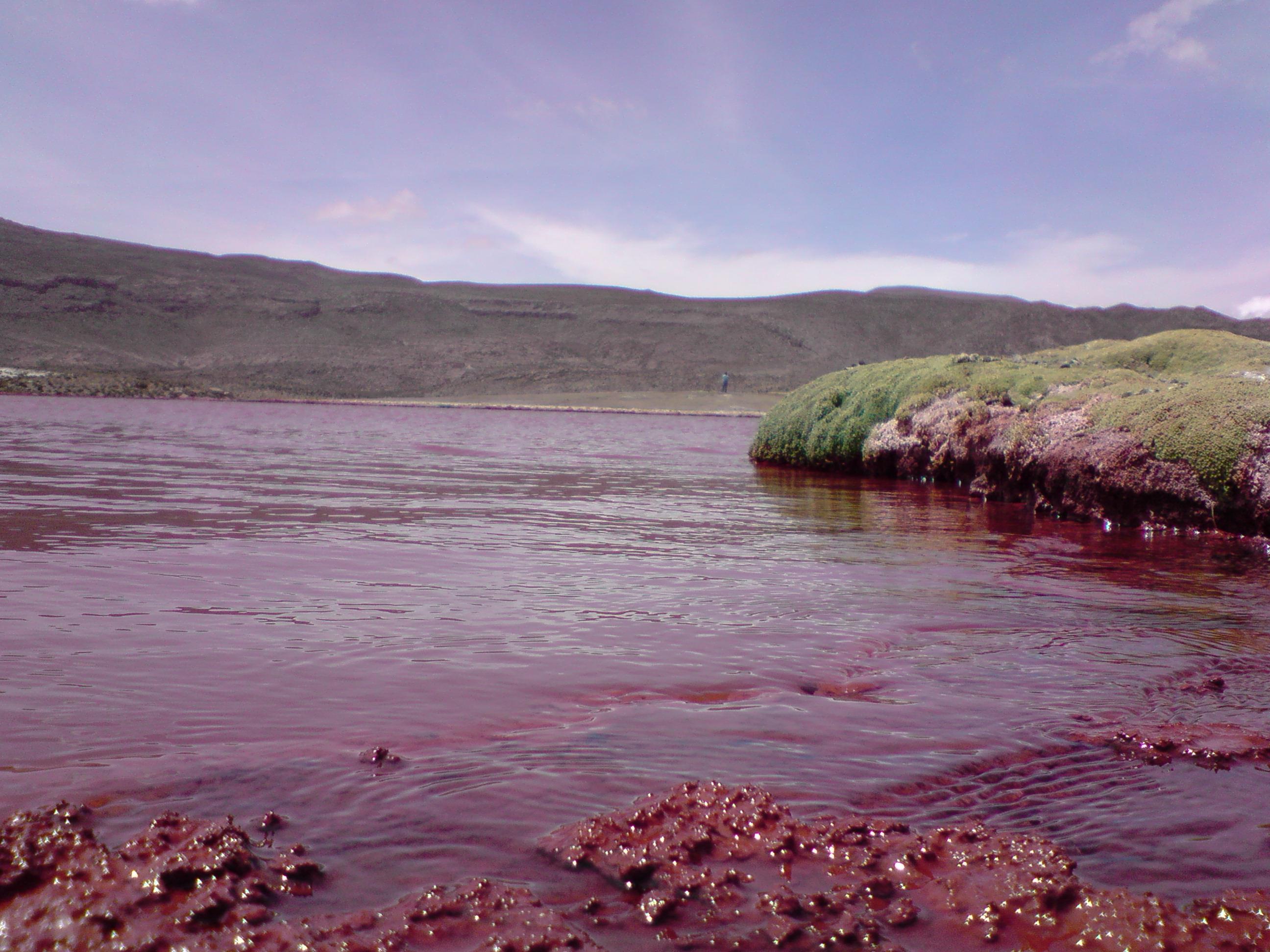 Una curiosidad la laguna roja de chile taringa for Como hacer una laguna