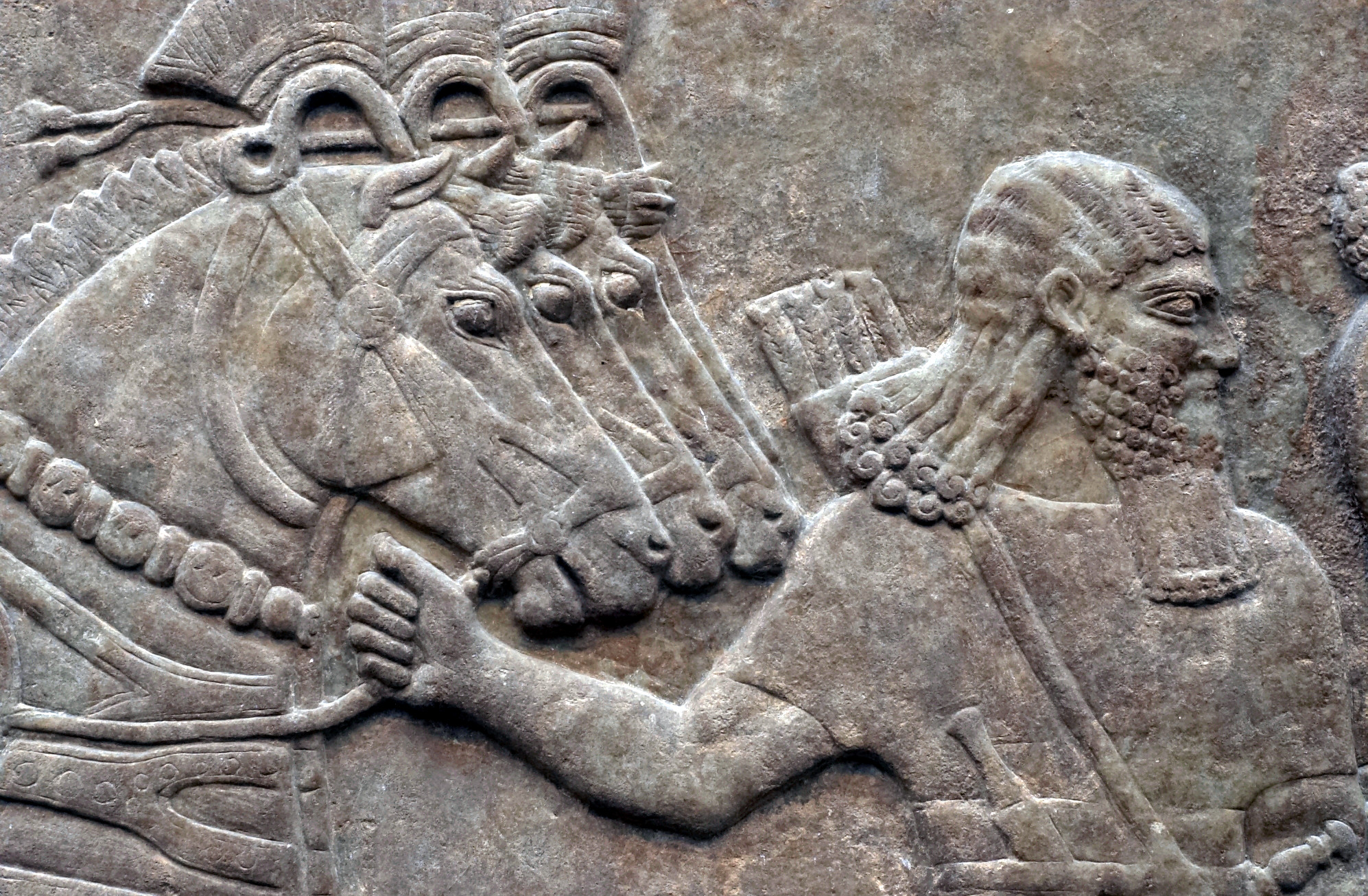 https://upload.wikimedia.org/wikipedia/commons/f/fe/Nimrud_Palace_Reliefs_2.jpg