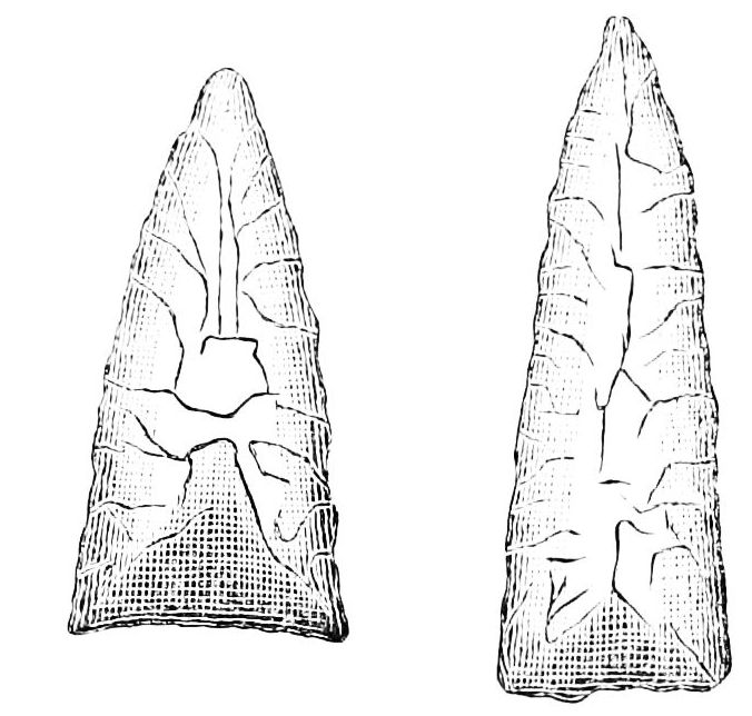 PSM V22 D469 Flint war arrow points.jpg