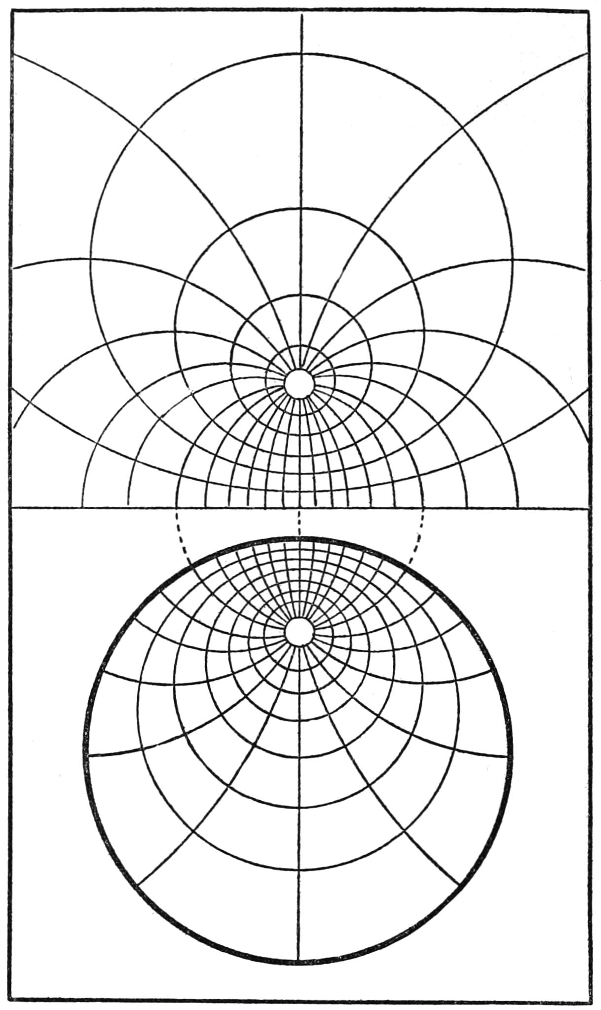 Tree Ring Drawings of Tree Rings.png