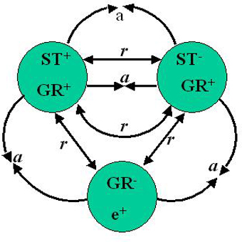 English: Quarks in protons in RFT