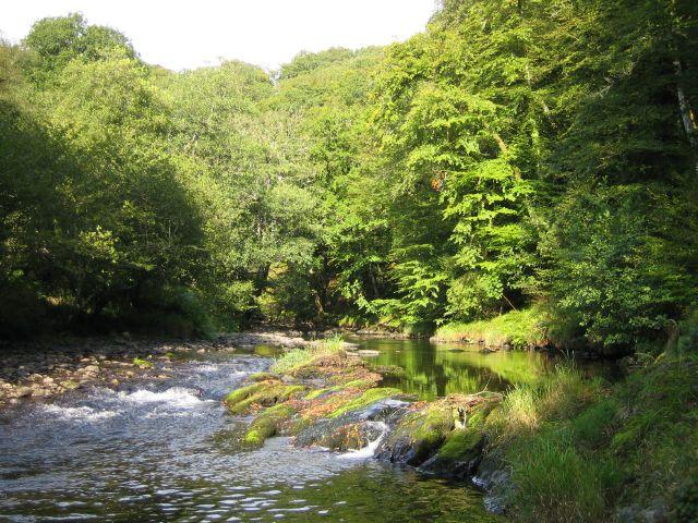 River Barle - geograph.org.uk - 242508