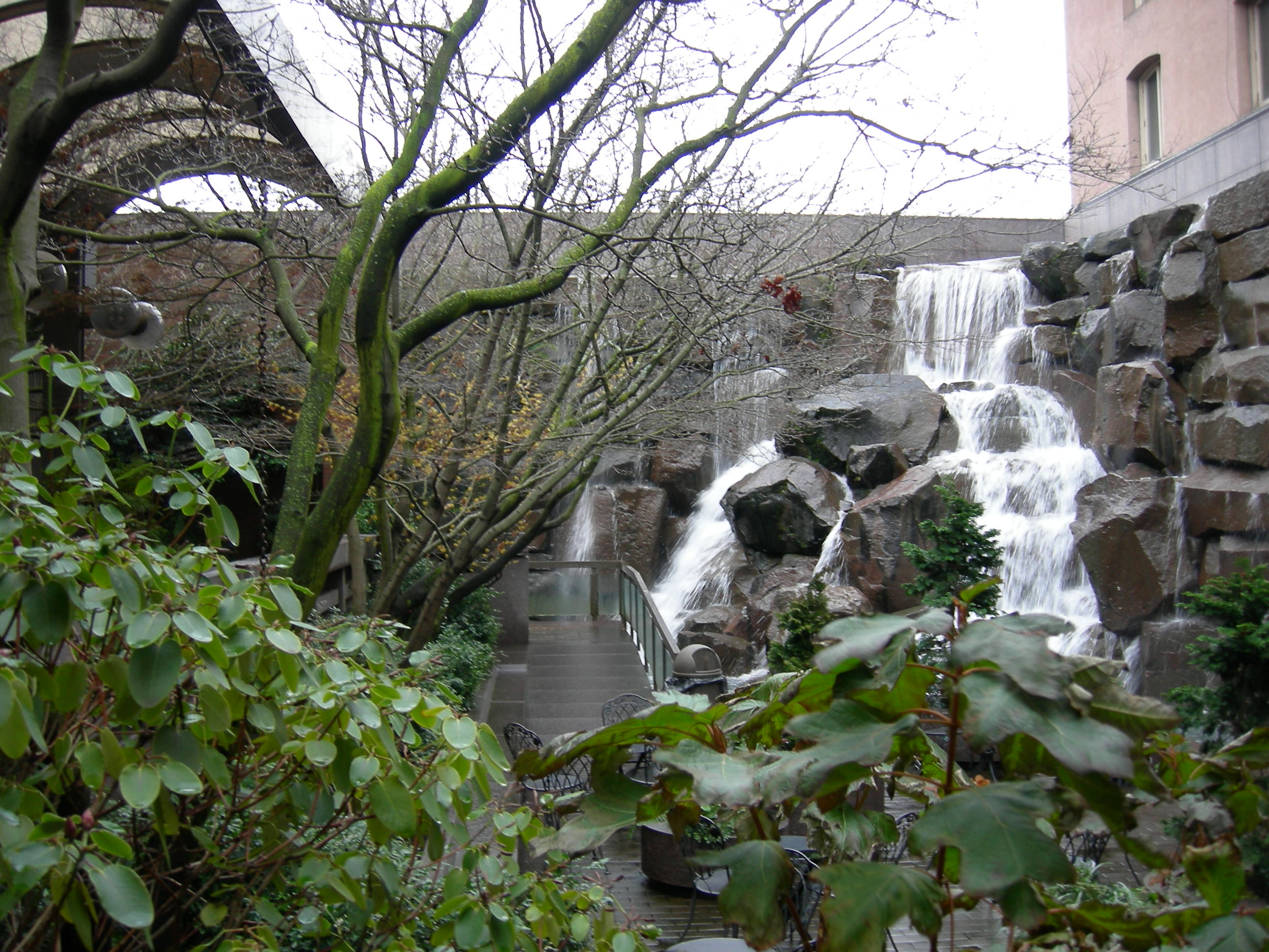 File seattle waterfall garden wikimedia commons for Indoor gardening wikipedia
