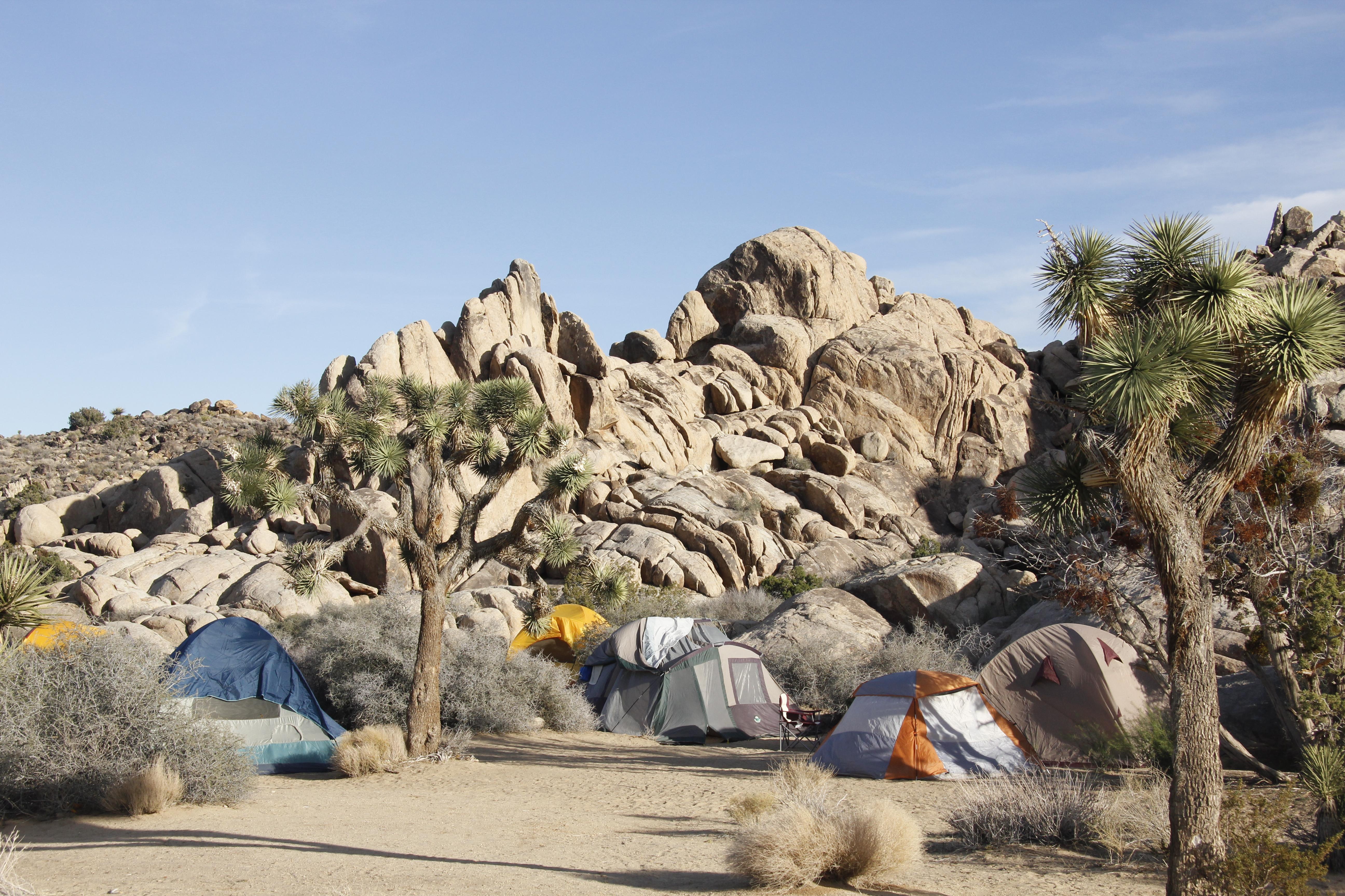 Camping In California State Beaches